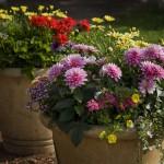 Littel Acres Custom Planters